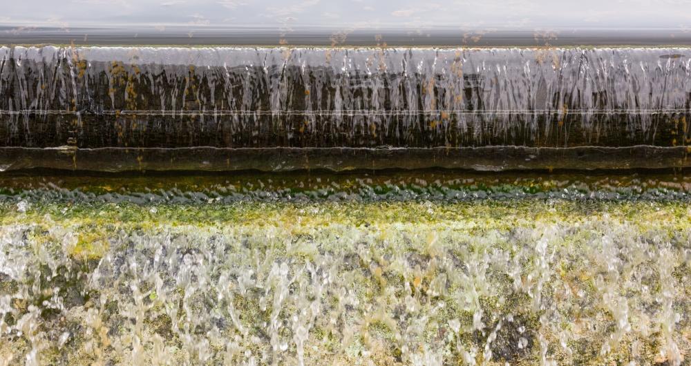 Процеси за пречистване на отпадъчни води с активна утайка