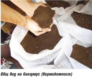 БГ Еко Проджект: Биохумус за екологично чиста продукция