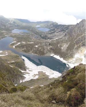 """Текат възстановителни дейности в Национален парк """"Рила"""""""